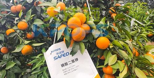 柑橘专用肥选采法特,就是不一样!