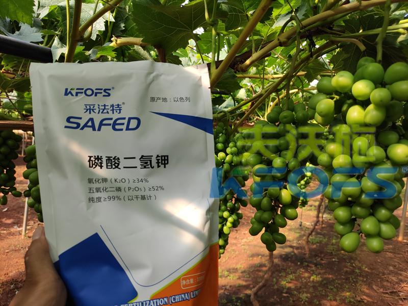 磷酸二氢钾价格高低,看效果好坏!