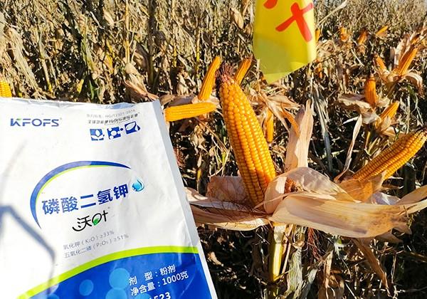 玉米施肥全优营养方案-沃叶篇